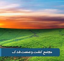 مجتمع کشت و صنعت تهران بزرگ